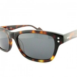 Old Focals | Directors Choice | Tortoiseshell (03)